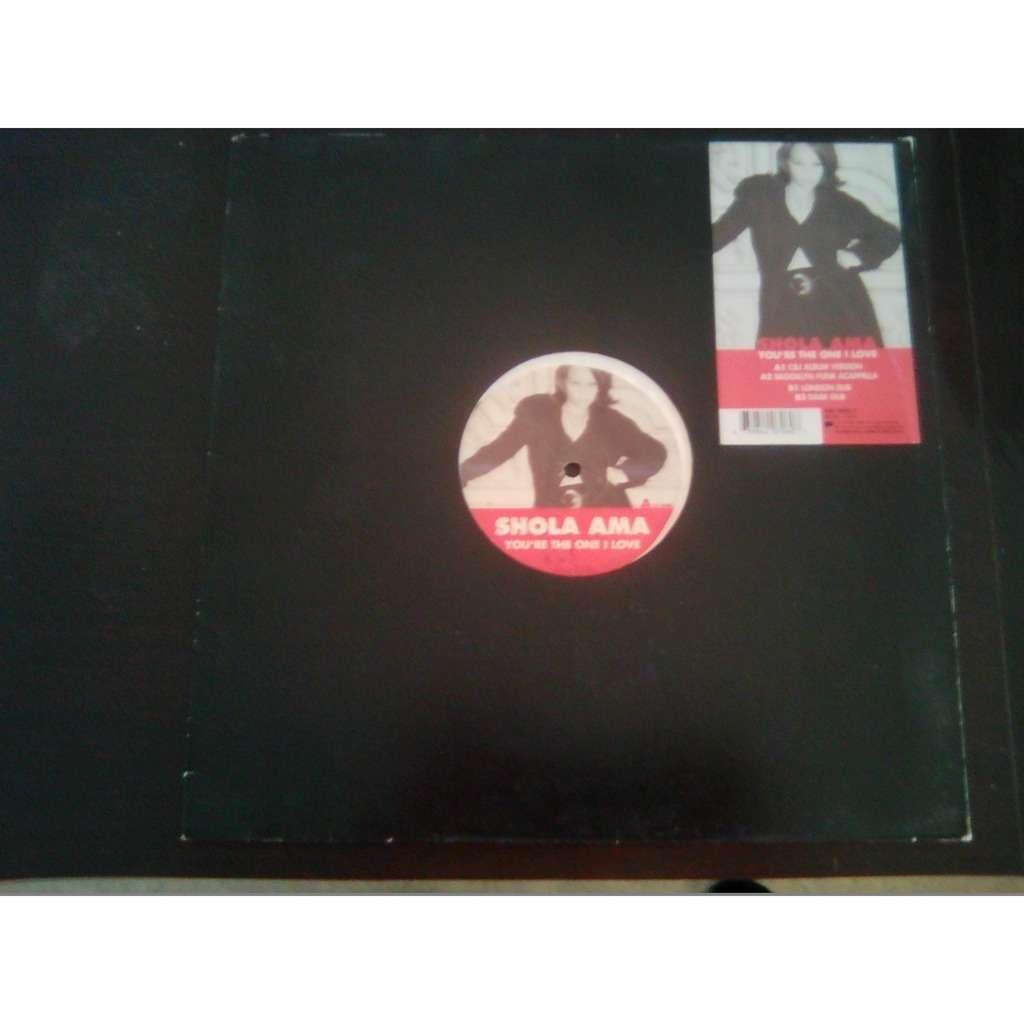 Shola Ama You're The One I Love (C&J Album Version) Remix – Cutfather & Joe