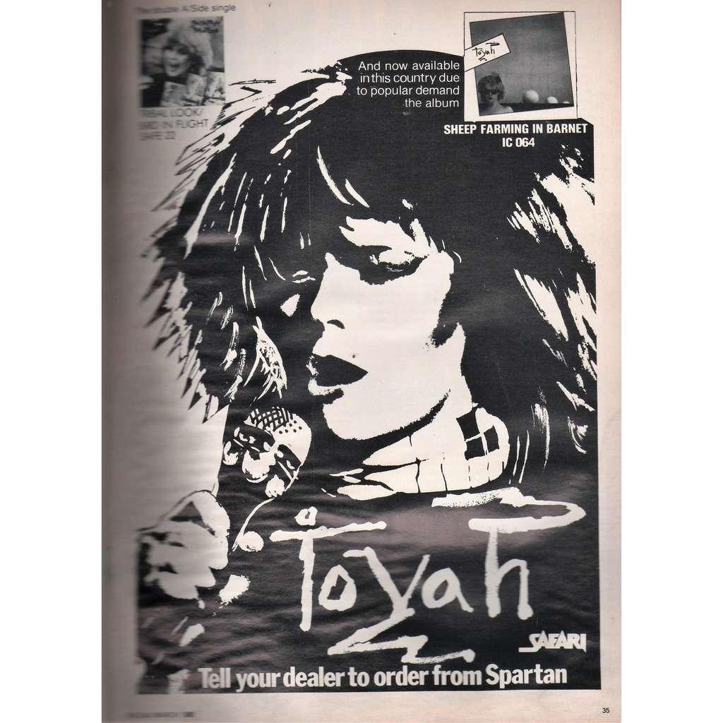 Toyah Sheep Farming In Barnet (UK 1980 Safari promo type advert 'album release' poster flyer!!)