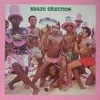 brazil sélection brazil sélection - vou festejar (12 tracks samba , batucada )