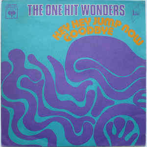 The One Hit Wonders Hey Hey Jump Now / Goodbye