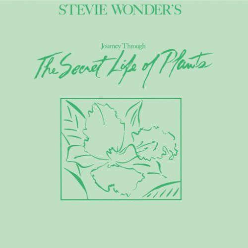 Stevie Wonder's Journey Through The Secret Life Of Plants