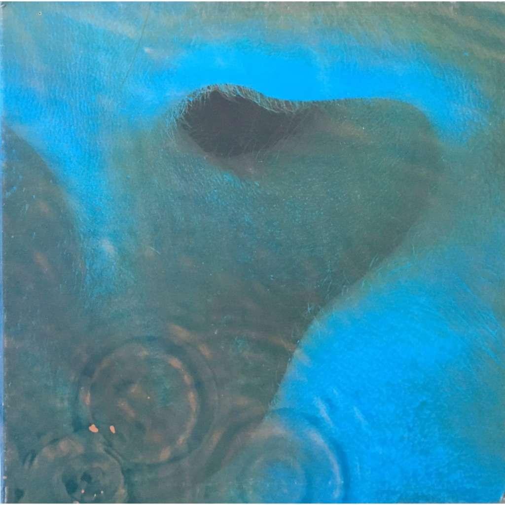 PINK FLOYD - MEDDLE (FR. PRESSING 12 VINYL LP)