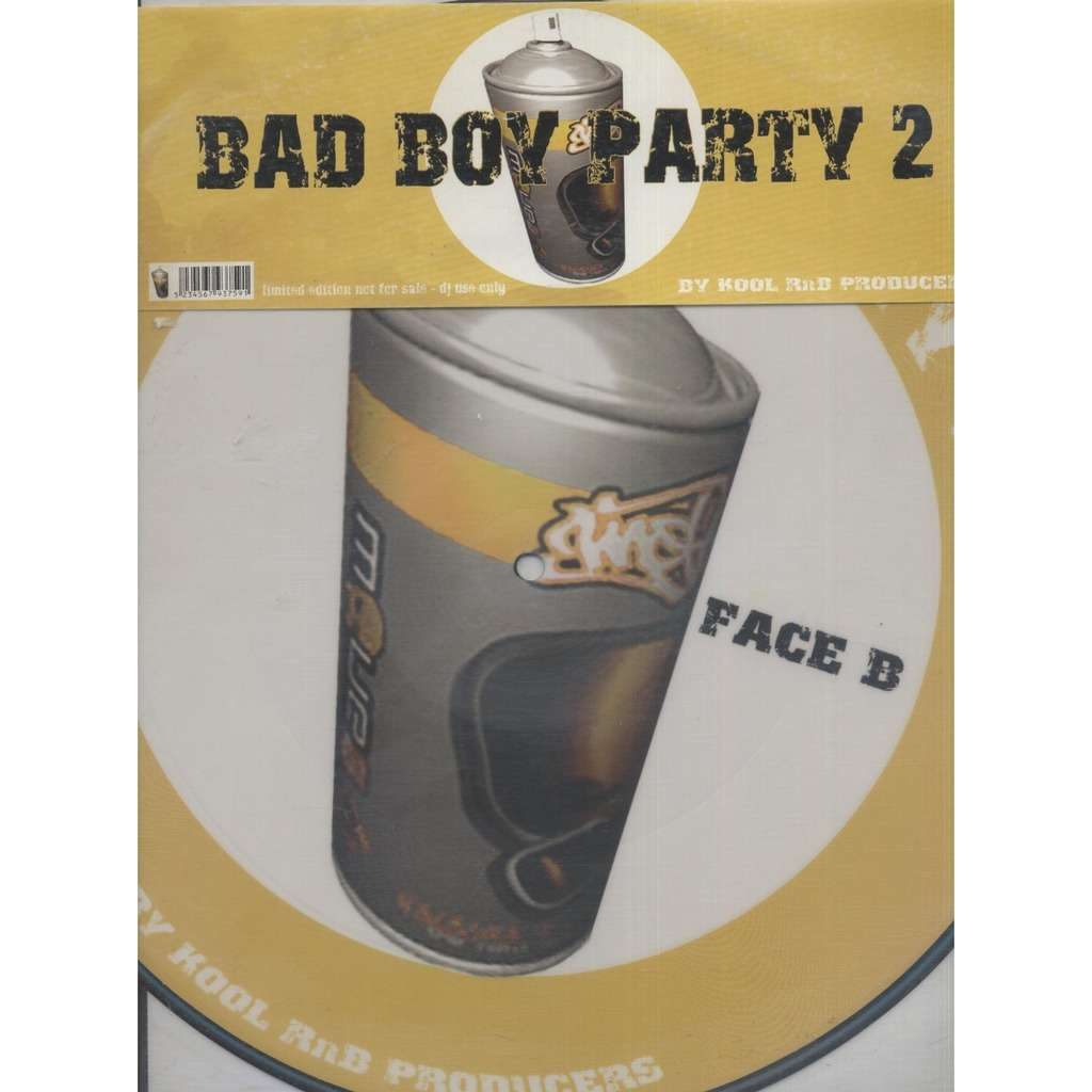 Dj Kool Bad Boy Party Volume 2 ( Picture Disc )