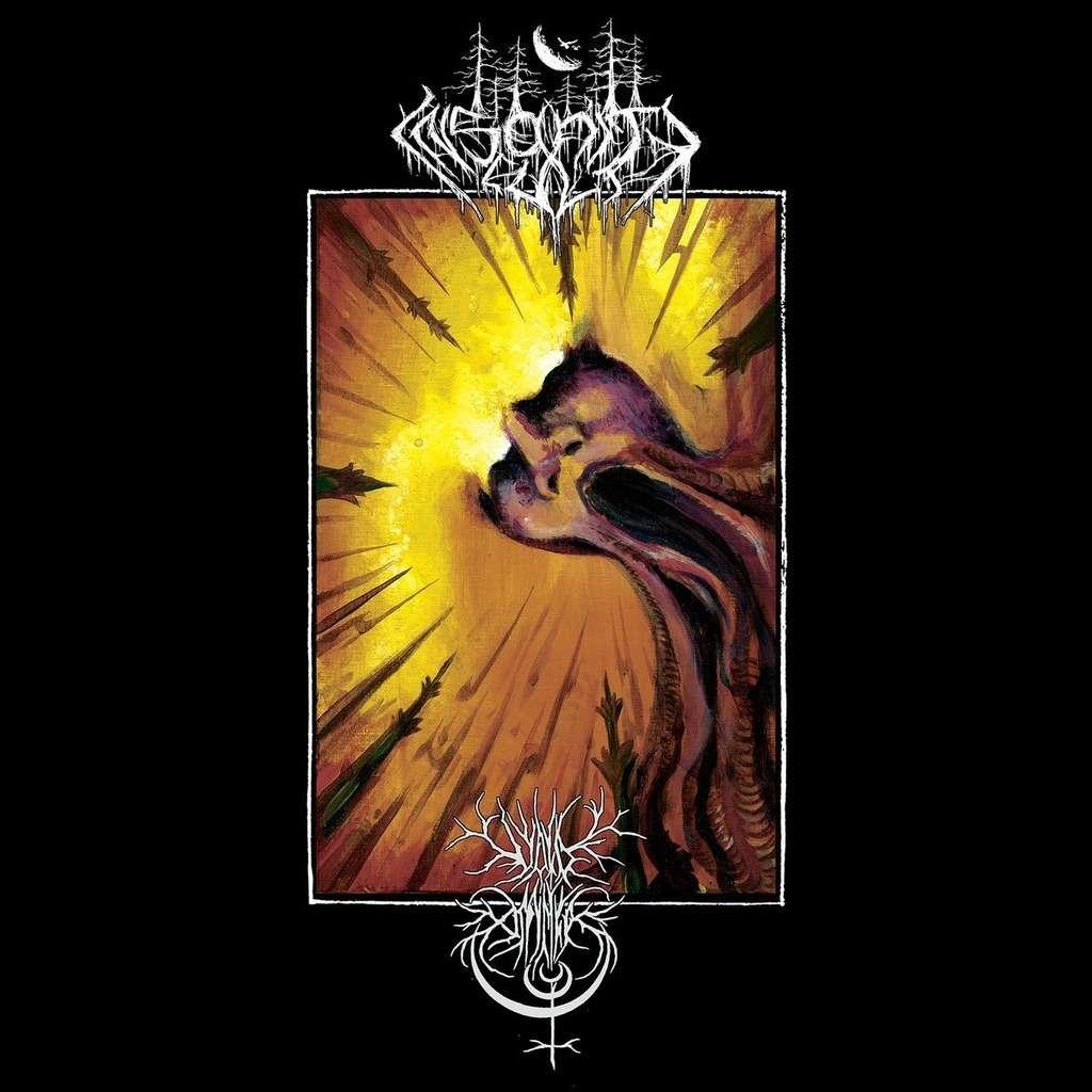 VOID OMNIA / INSANITY CULT Contemplation in Discordance. Black Vinyl