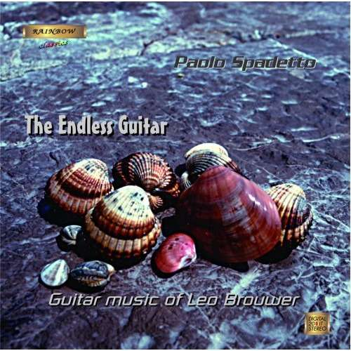 Leo Brouwer The Endless Guitar, Paolo Spadetto