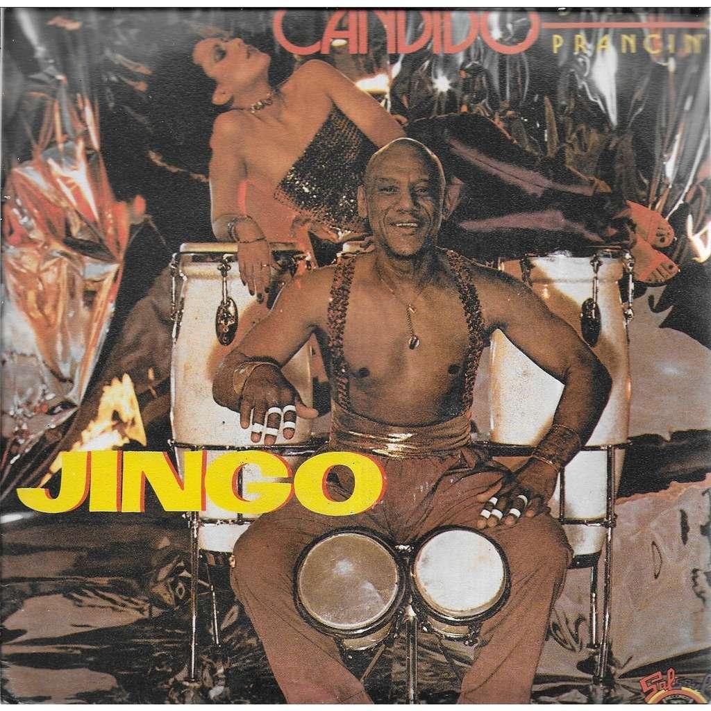 CANDIDO Jingo