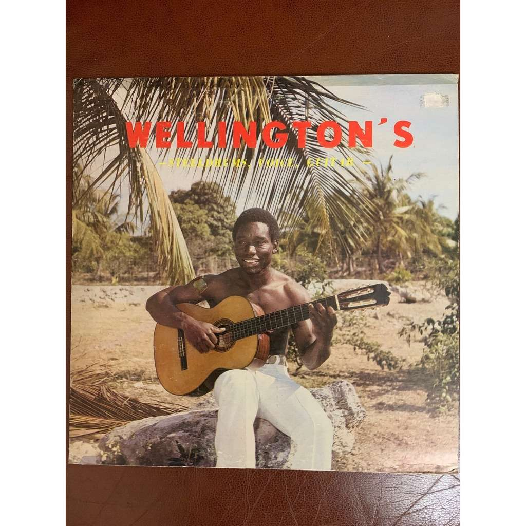 Wellington's Steeldrums, Voice, Guitar