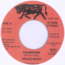 BRO VALENTINO - Dread Music / Every brother is not a brother - 7inch (SP)