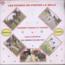 PAMBOU TCHICAYA TCHICO & LOLO LOLITA - Rosalie / Salima - LP