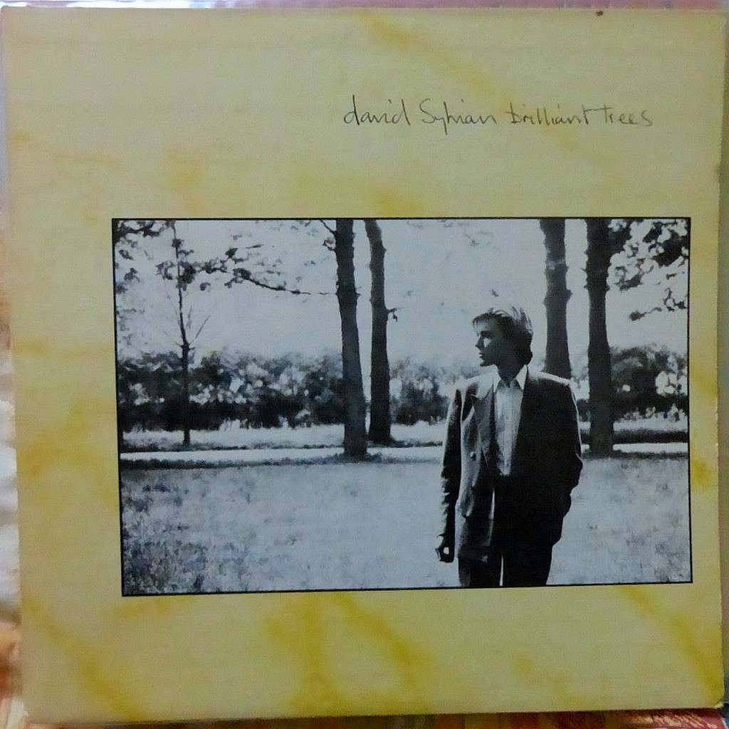 DAVID SYLVIAN BRILLIANT TREES