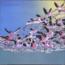 MENDES & MENDES - Mitamiyo - LP