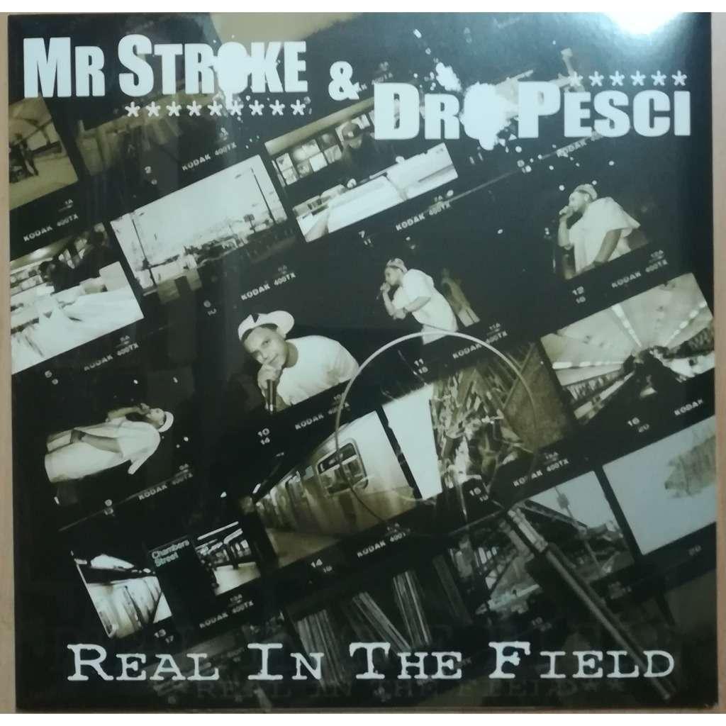 mr stroke & dr pesci real in the field