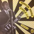 TEWOLDE REDDA - Eritrea's Guitar Pioneer - 33T