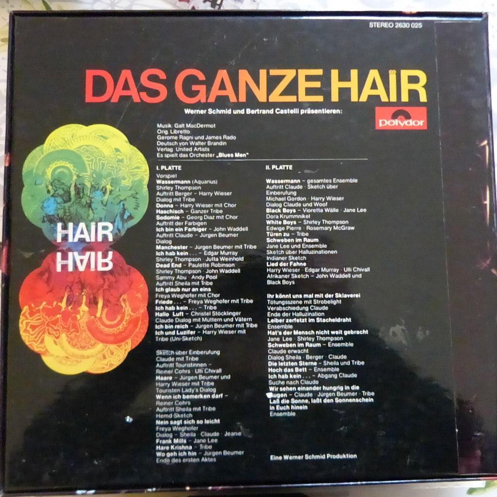 HAARE ENSEMBLE DAS GANZE HAIR