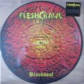 FLESHCRAWL - Bloodsoul (lp) Ltd Edit Picture disc & 300 Copies -USA - LP