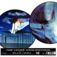 mylène farmer innamoramento (2 × vinyl, lp, album, limited edition, picture disc )