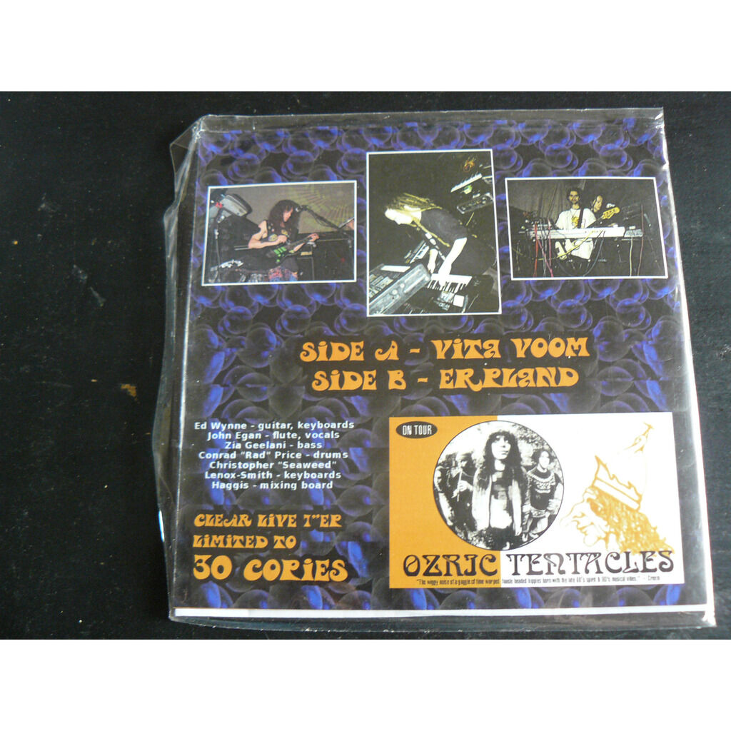 ozric tentacles The Limelight Live NYC 2014