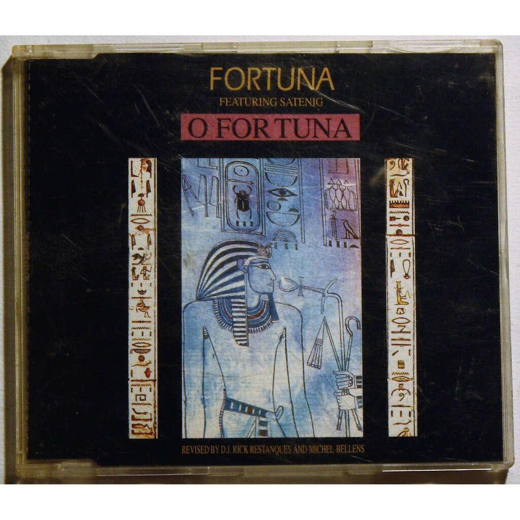 Fortuna Featuring Satenig O Fortuna
