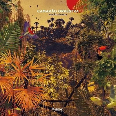 Camarao Orkestra Nacao Africa