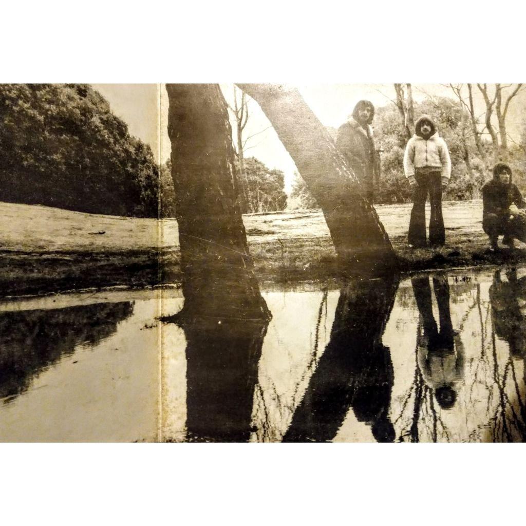 TRIANA triana ( LP, Album, Gatefold, 1st press )