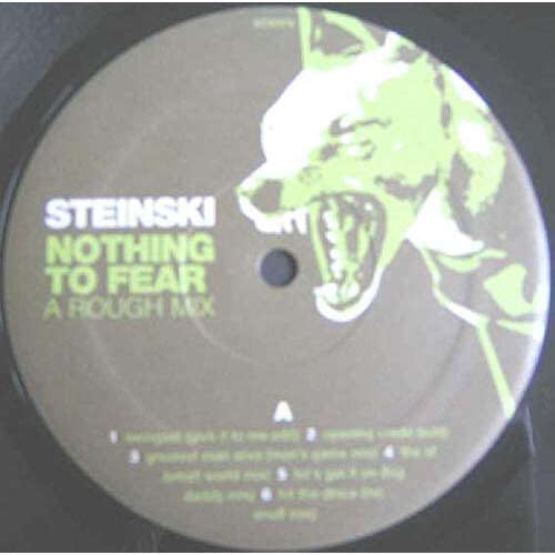 Steinski and double Dee Nothing To Fear( A Rough Mix) Brand New Factory Sealed Mint