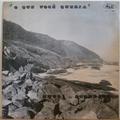 HUGO DO ACORDEON - O que voce queria - LP