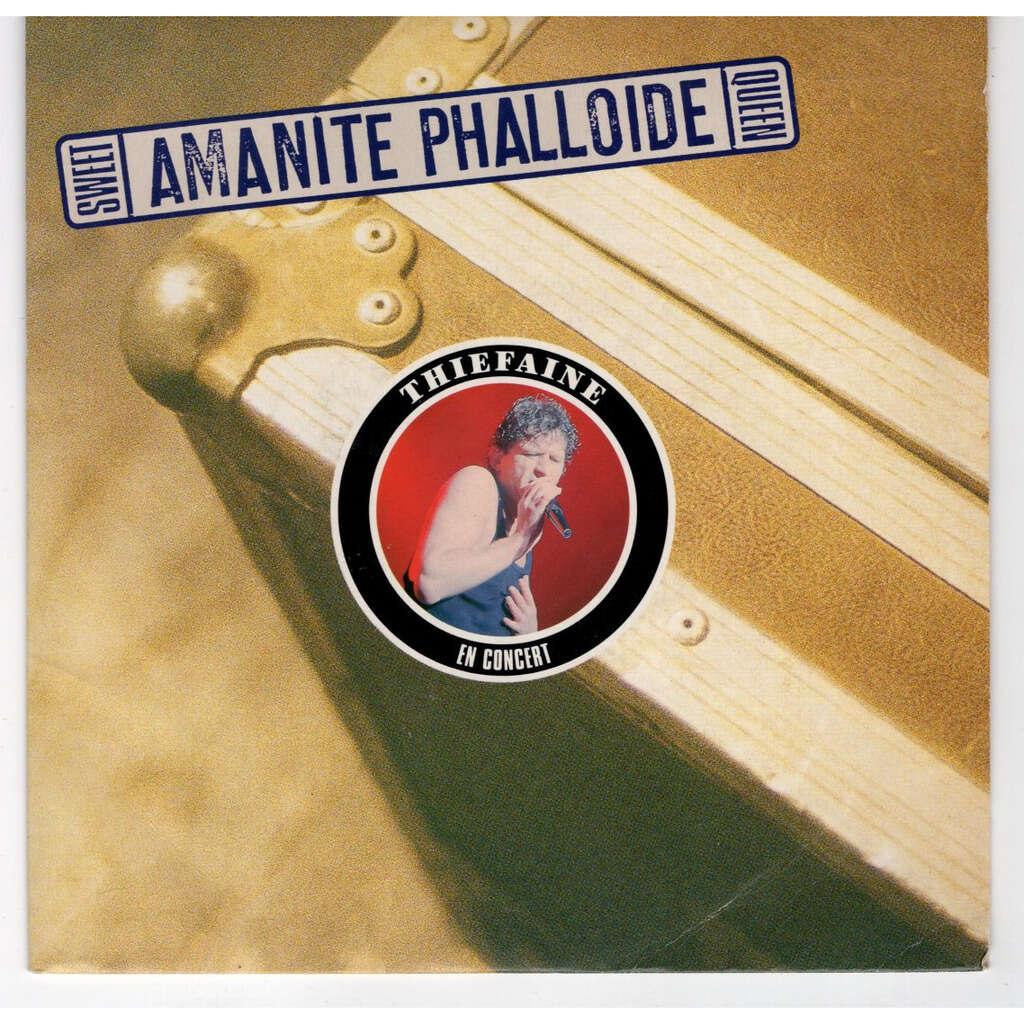 Hubert Félix Thiéfaine Sweet amanite phalloide queen - Live
