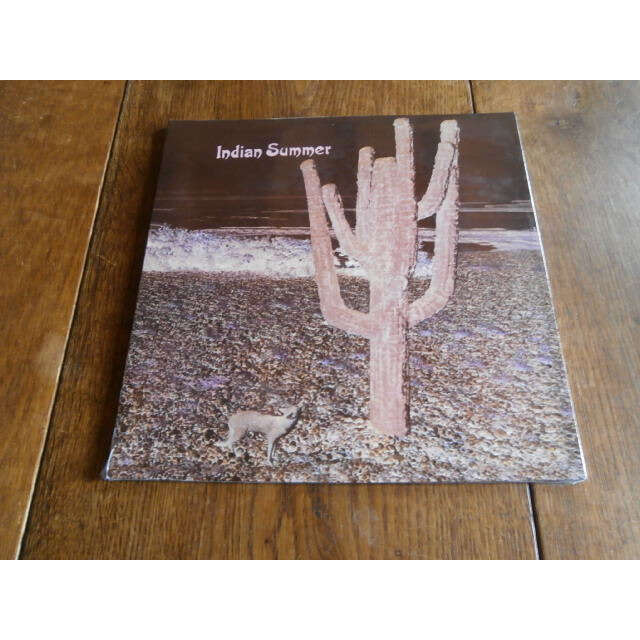 indian summer s/t