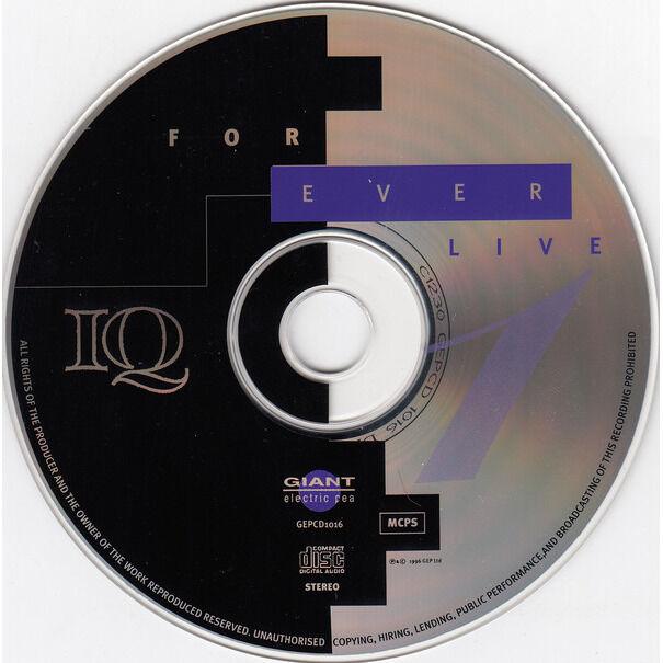 iq forever live