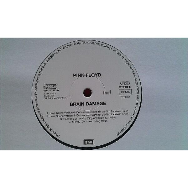 Pink Floyd Brain Damage