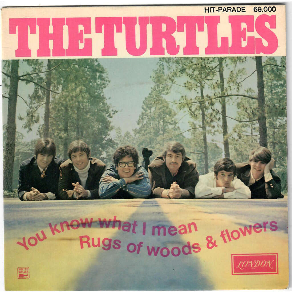 THE TURTLES You Know What I Mean / Rugs Of Woods & Flowers