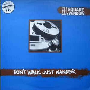 Square Window Don't Walk Just Wander