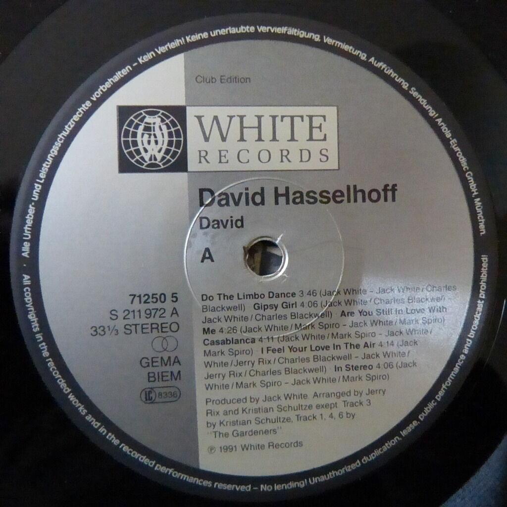 DAVID HASSELHOFF DAVID