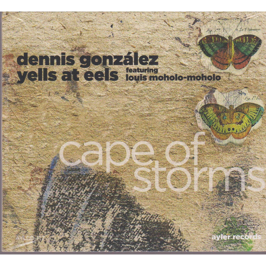 dennis gonzalez yells at eels cape of storms